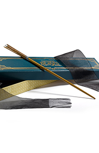 Fantastic Beasts™ Newt Scamander™ Wand with Collector Box