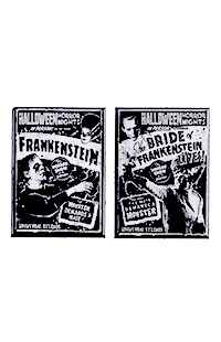 Halloween Horror Nights 2021 Frankenstein and Bride Magnet Set