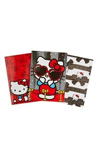 Hello Kitty® Notebook Set