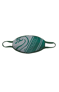 Medium Slytherin™ Cloth Face Mask