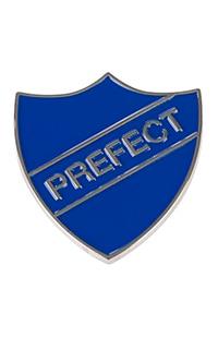 Ravenclaw™ Prefect Pin